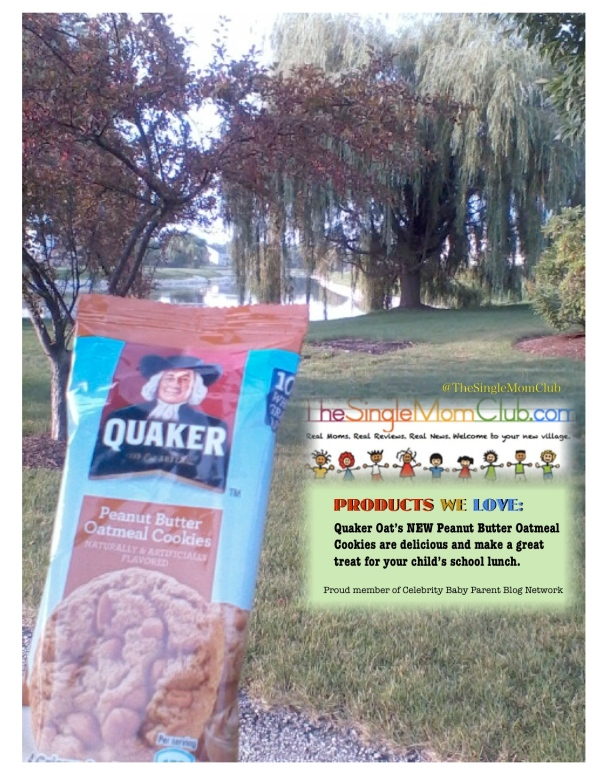 ProductReview_SingleMomClub_QuakerPeanutbutterOatmealcookies_AllGone