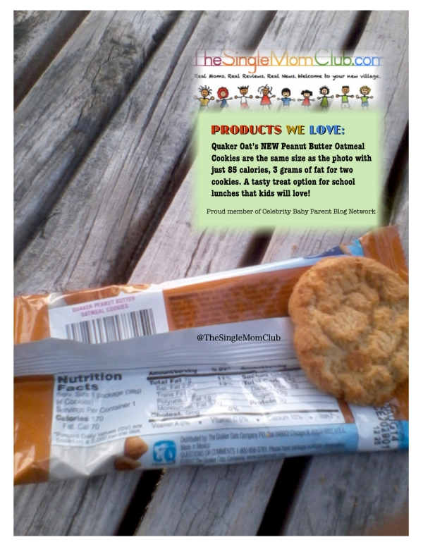 ProductReview_SingleMomClub_QuakerPeanutbutterOatmealcookies_Bench